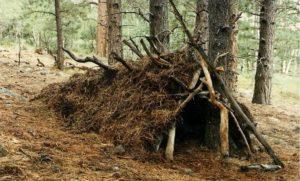 Belgrad ormanı kamp